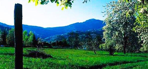 Roccabruna